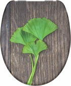 82154 GINGKO & WOOD WC sedátko softclose, duroplast